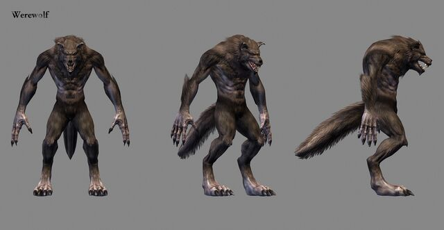File:Werewolf in-game model.jpg
