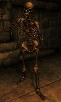 File:Beast oblivion skeleton.png
