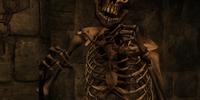 Skeleton (Oblivion)
