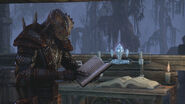 Argonian Reading a Book