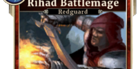 Rihad Battlemage