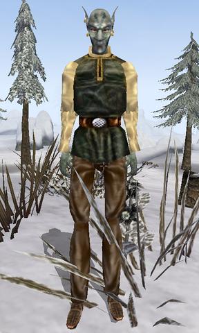 File:Tinos Drothan Morrowind.png