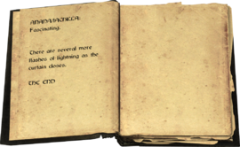 Page 45-46