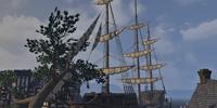 Tava's Bounty