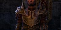 Commander Pelletus