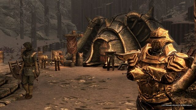 File:Dragonborn Screenshots 9.jpg