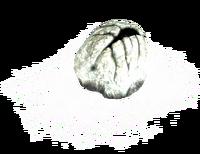Skyrim-egg-sac