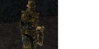 Retrieve Founder's Helm