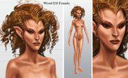 Wood Elf Female
