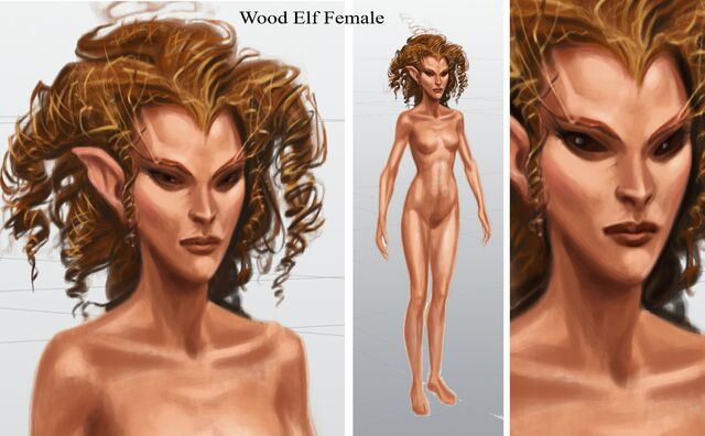File:Wood Elf Female.jpg