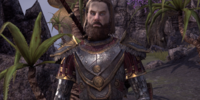 Captain Hjolm