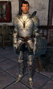 Fighters Guild Porter Cheydinhal