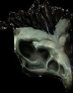 Bonehawkskull