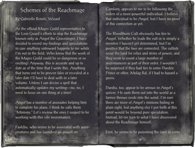 File:Schemes of the ReachmagePage1.png