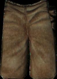 Fortify Pants