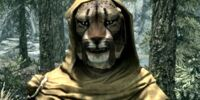 Random Encounters (Skyrim)