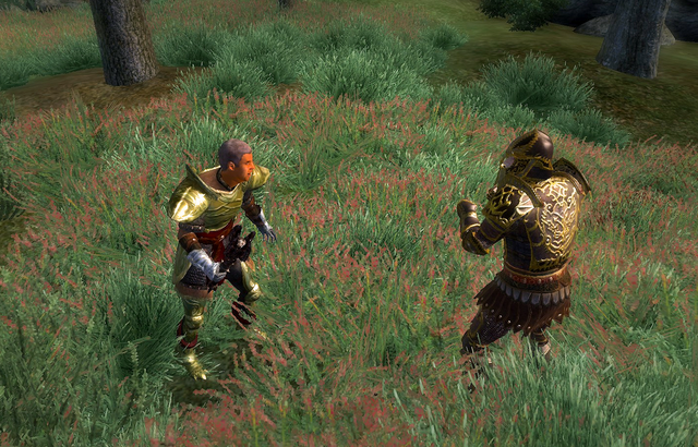 File:Molag Bal (Quest) Fight.png