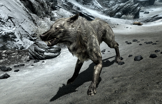 File:Ice Wolf (Skyrim).png