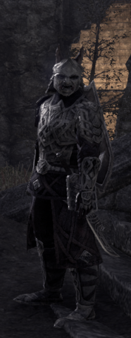 File:Orsinium New Armor Set.png