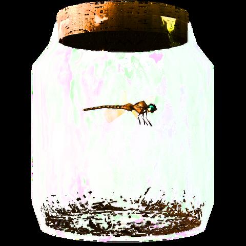 File:TESV Dragonfly In A Jar Crop.png