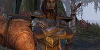 Roneril the Mercenary