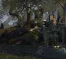 Black Vine Ruins