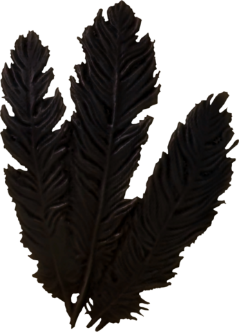 File:Hagraven feathers.png