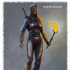 Kobieca zbroja Mrocznego Bractwa
