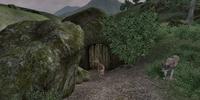 Newt Cave (Oblivion)