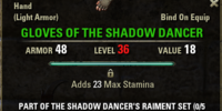 Shadow Dancer's Raiment