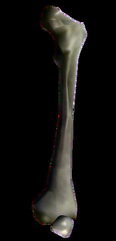 File:Bones Big Bone.png
