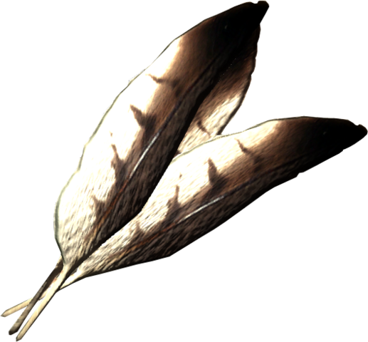 File:Hawk feathers.png