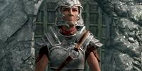 Imperial Armor (Skyrim)