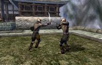 Cloud Ruler Temple Training