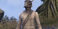 Marsh-Wader