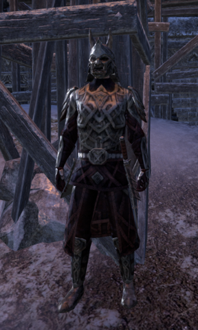 File:Orsinium Guard.png