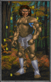 Daggerfall Leather Armour