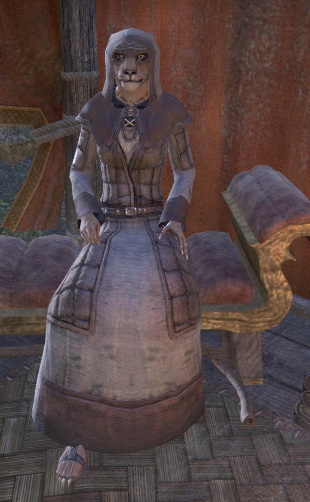 Image result for khajiit priestess