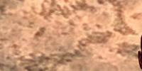 Thongvor Sangue Argento