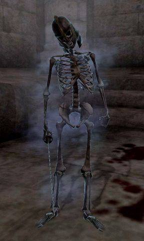 File:Skeleton of Casnar.png