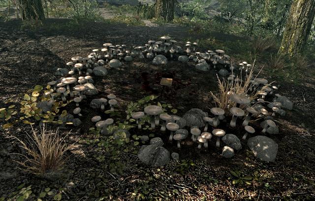 File:Fungi.png