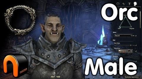 Elder Scrolls Online - Orc Male - Character Creation