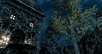 Mistveil Night