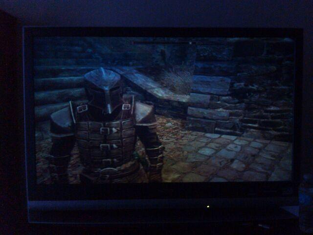 File:Photo of a Dawnguard on the TV.jpg