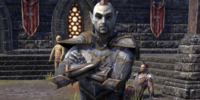 Fighters Guild Sentry