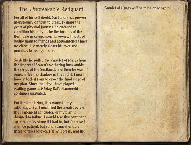 File:The Unbreakable Redguard.png