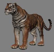 Senche-tiger (Online)