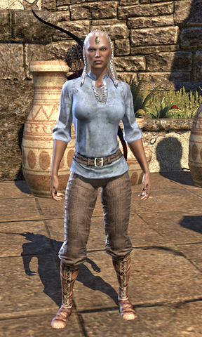 File:Servant's Robes Female.png