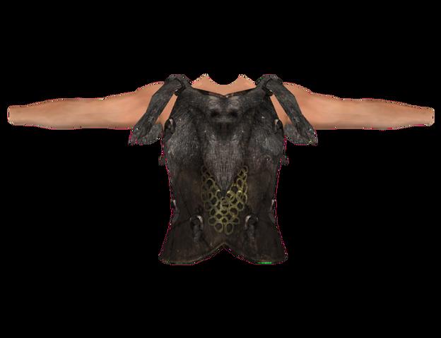 File:Savior's Hide (Oblivion).png