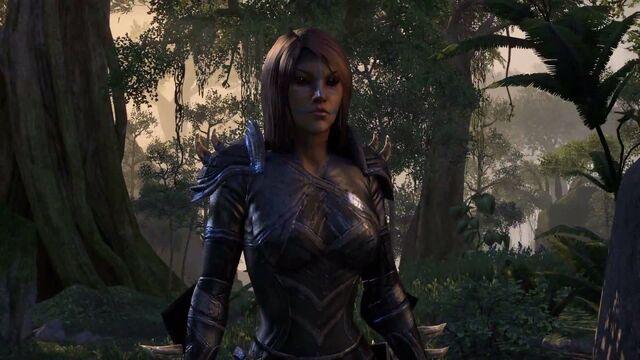 File:Bosmer - Elder Scrolls Online.jpg